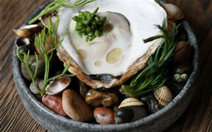Nomaoysters_2302455b
